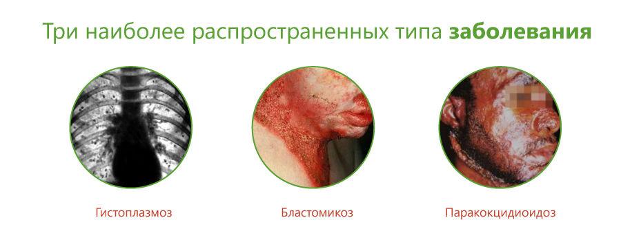 endemicheskii-02